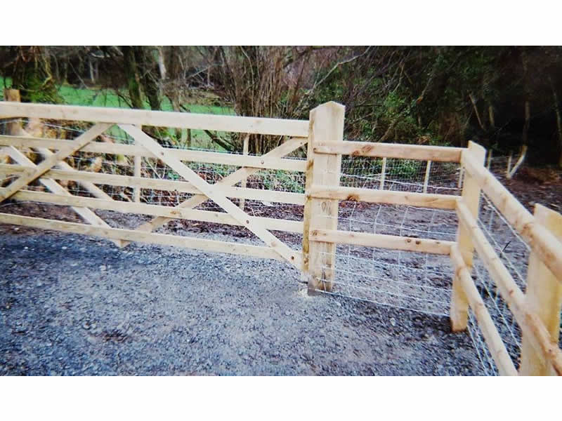 Five bar gate and fencing