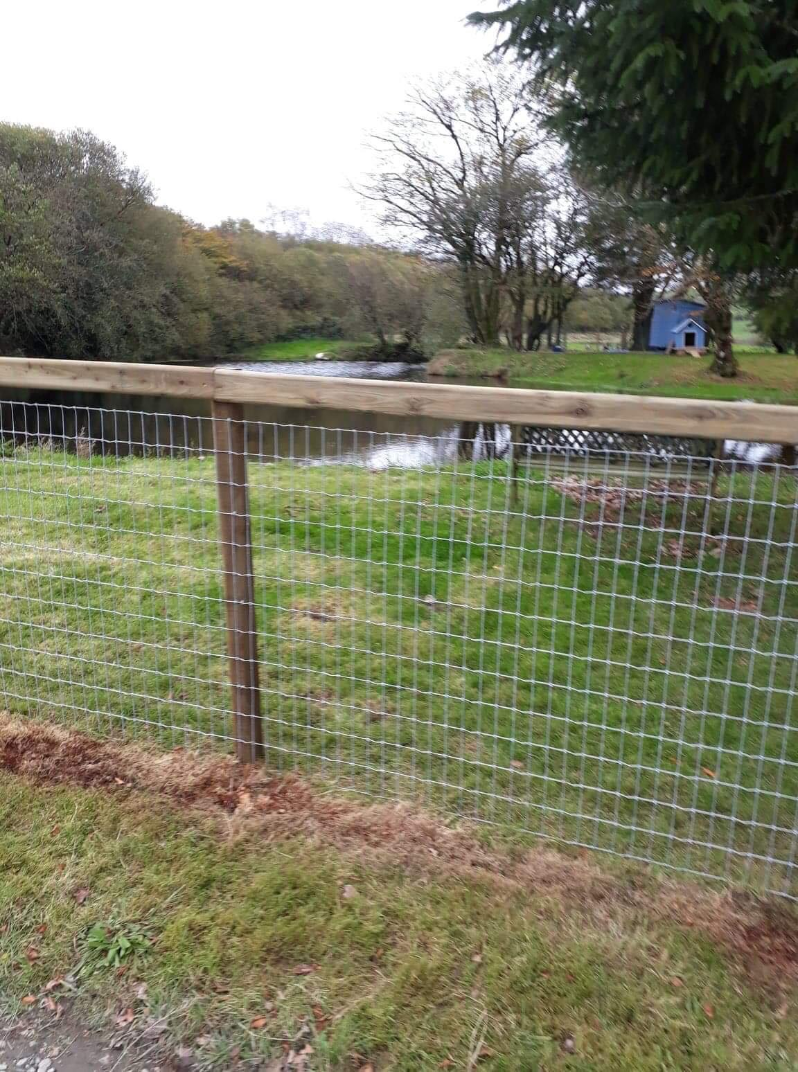 Post and wire fencing to stop small mammals getting into the enclosure