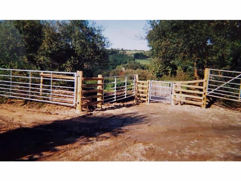 Metal Gates, wooden fencing