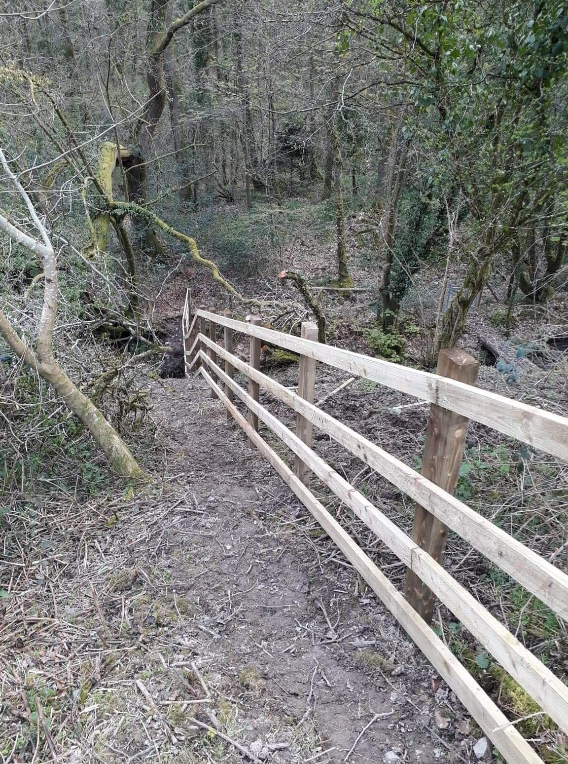 Post and rail fencing going downhill